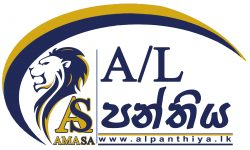 AL Panthiya Gold & Blue 04